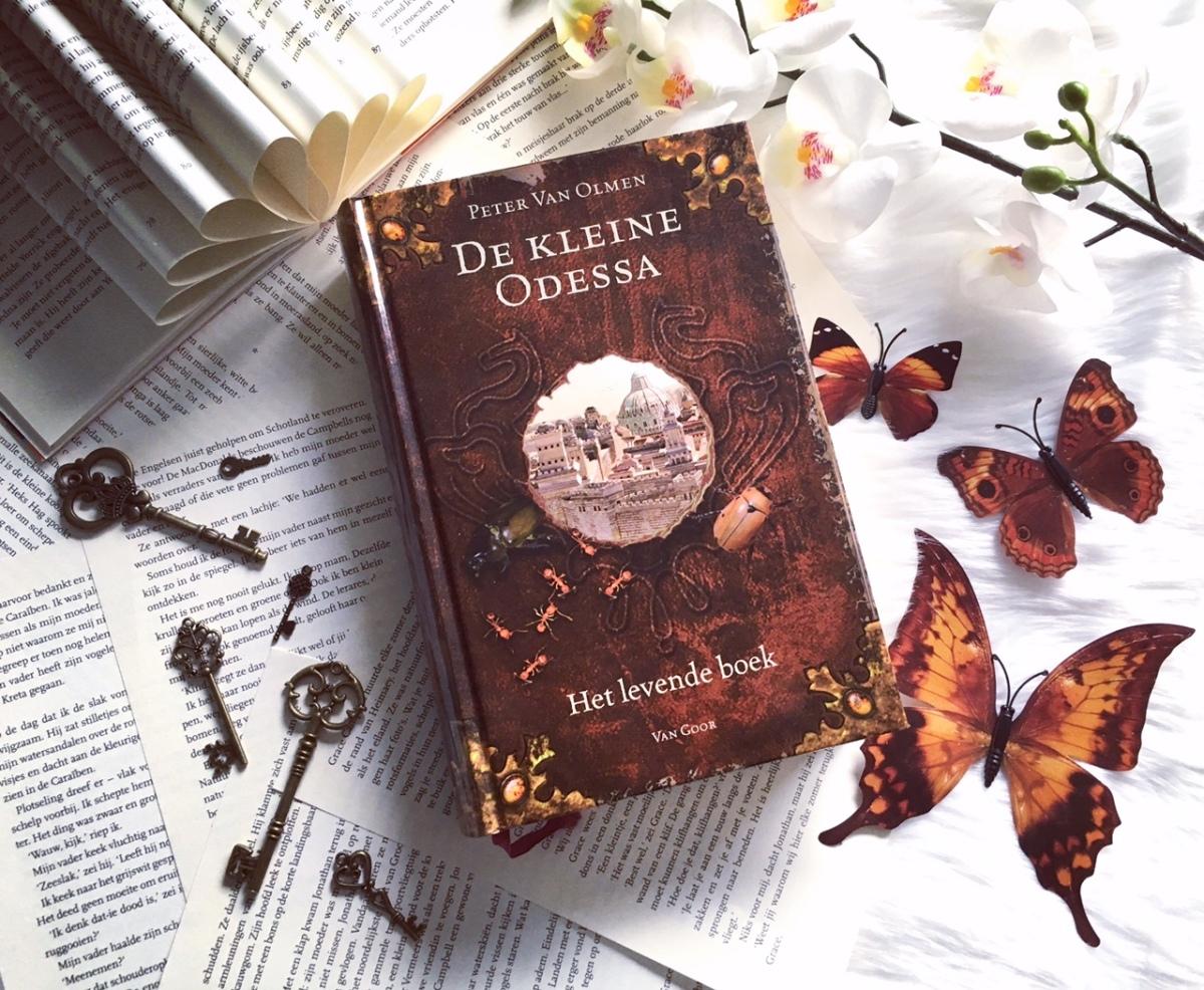 De Kleine Odessa – Peter VanOlmen