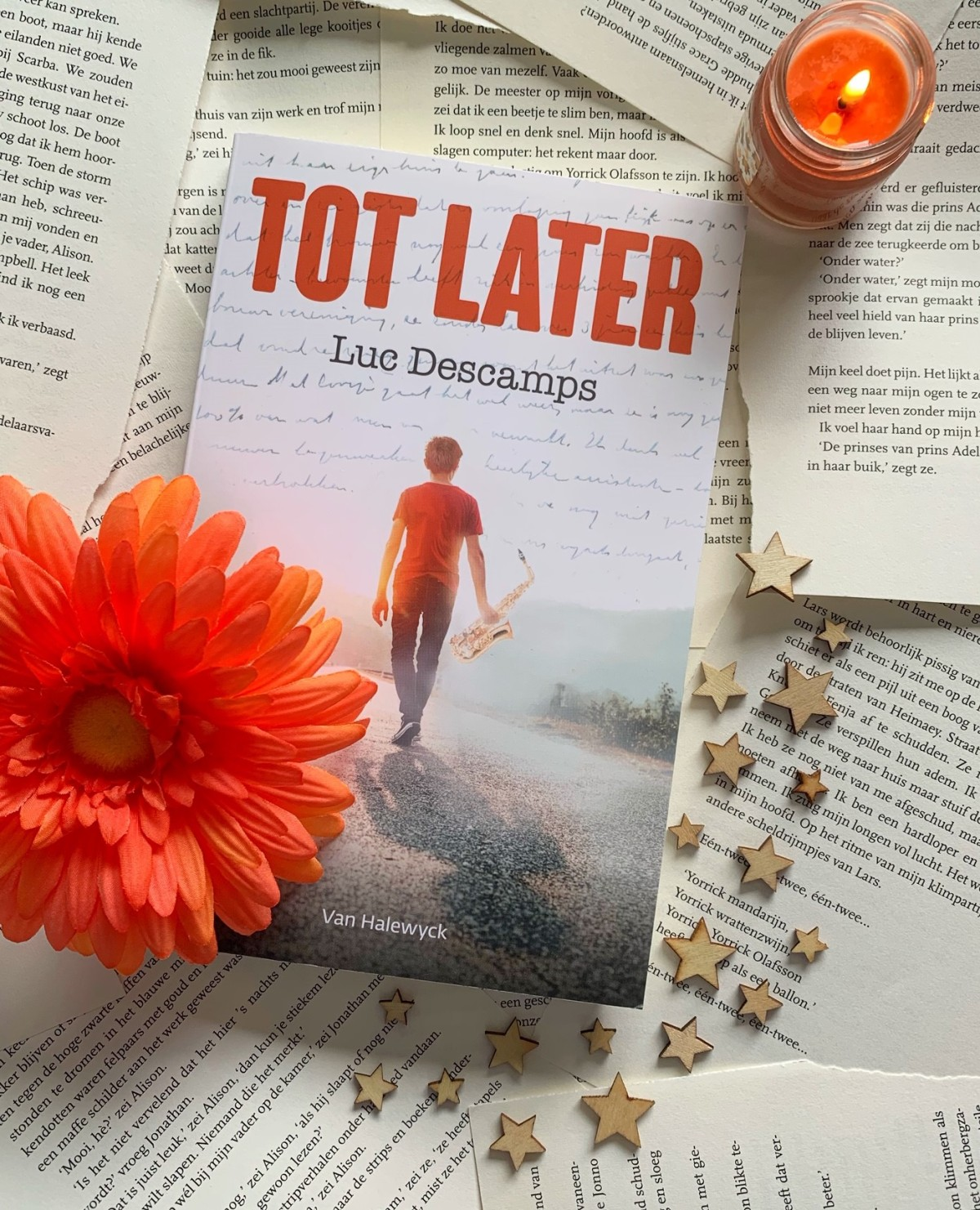 Tot later – Luc Descamps