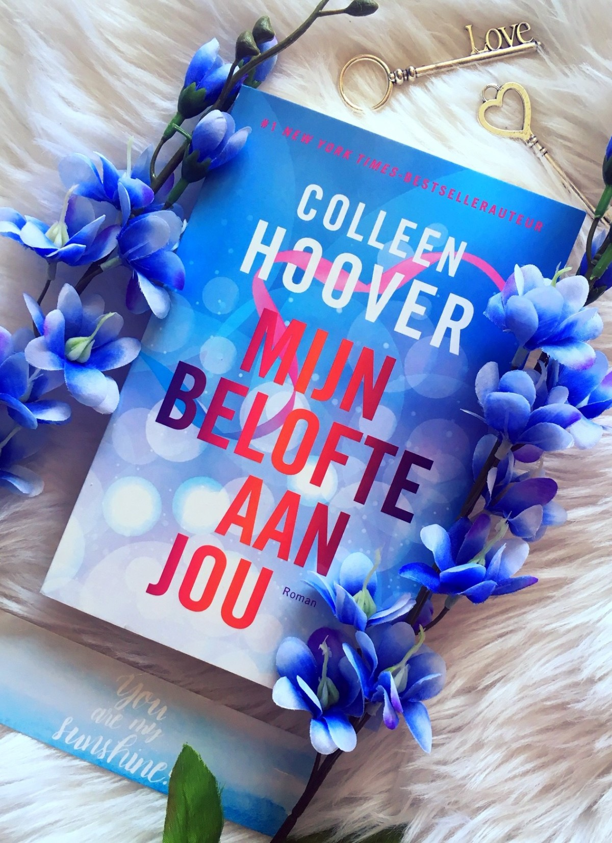 Mijn belofte aan jou – ColleenHoover